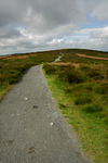 Path along the Long Mynd