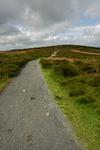 Path along the Long Mynd