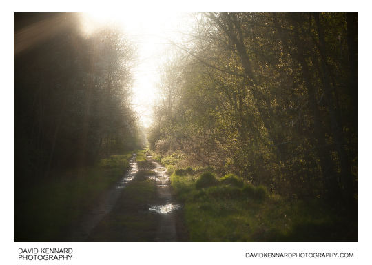 Photo of old railway line taken with Pictrol