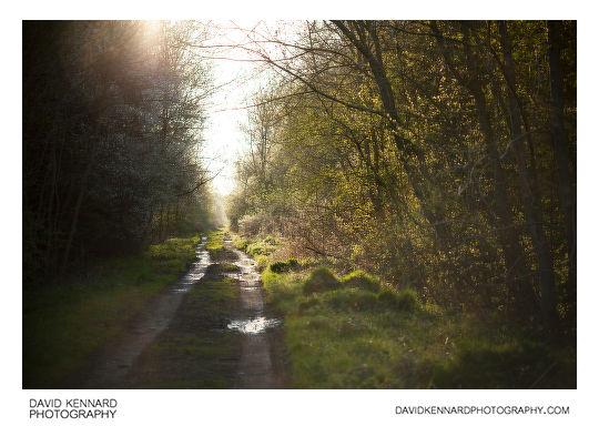 Photo of old railway line taken without Pictrol