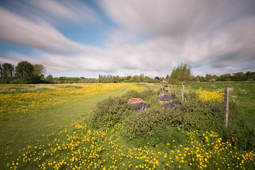 Long exposure photo of a buttercup meadow taken with Zomei 6 stop and XCSource 10 stop ND filters