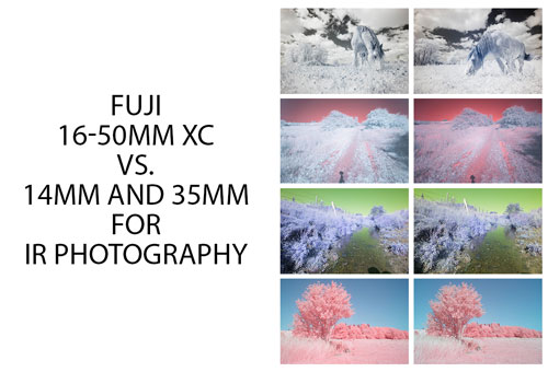 Fuji 16-50mm XC vs 14mm and 35mm for IR photography