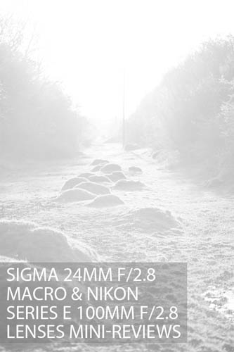 Sigma 24mm f2.8 macro & Nikon Series E 100mm f2.8 lenses mini-reviews