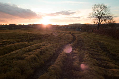 Image of sunset over a field taken with full spectrum converted Fuji X-M1 with Fuji 14mm lens.