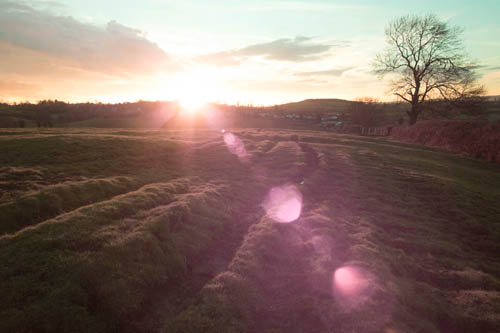 Image of sunset over a field taken with full spectrum converted Fuji X-M1 with Fuji 14mm lens and Tiffen T1 filter.