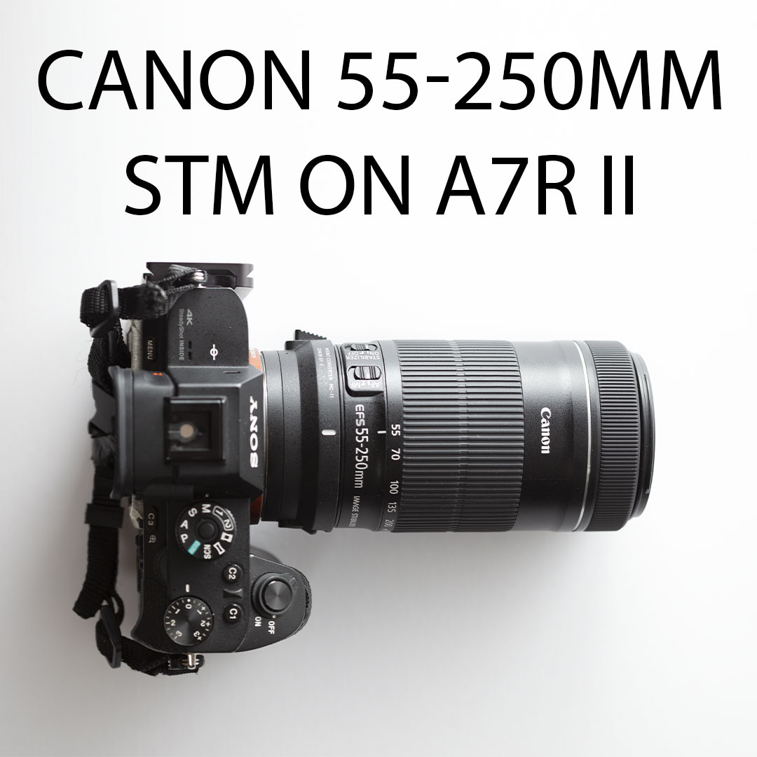 Canon 55-250mm STM on A7R II