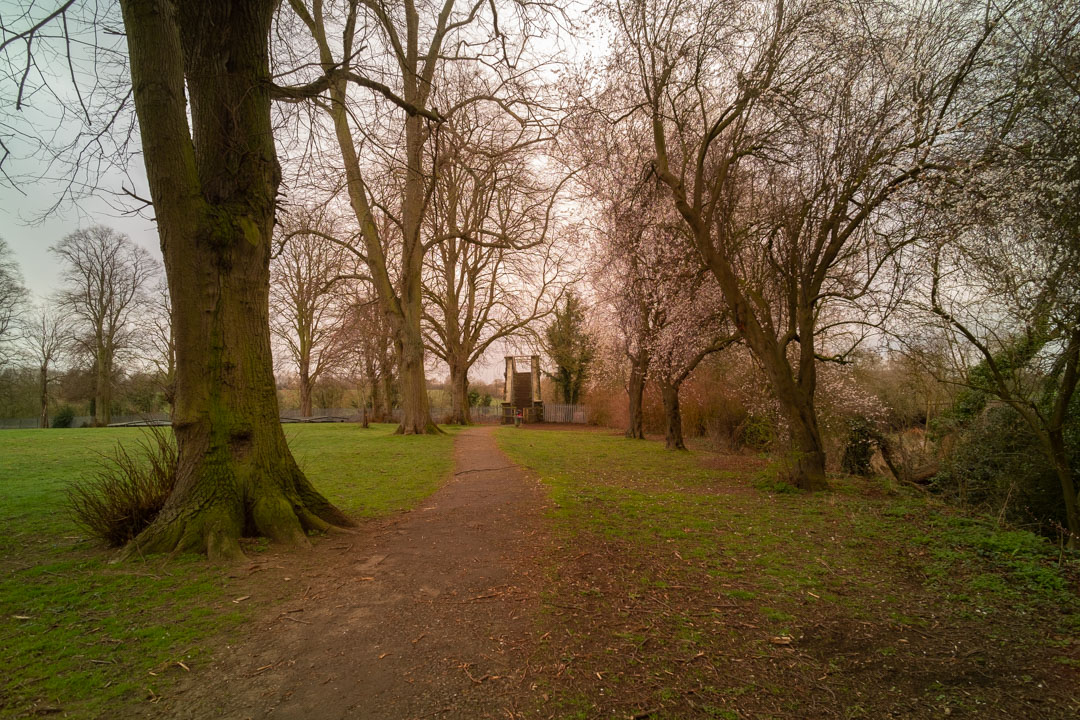 Photo of path and trees in a park taken on a full spectrum camera with a wide-angle lens with B+W 486 filter