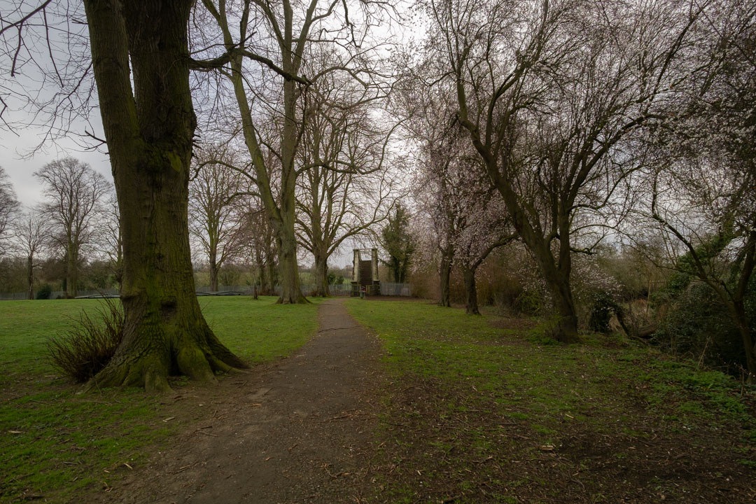 Photo of path and trees in a park taken on a full spectrum camera with a wide-angle lens with Schott BG40 filter