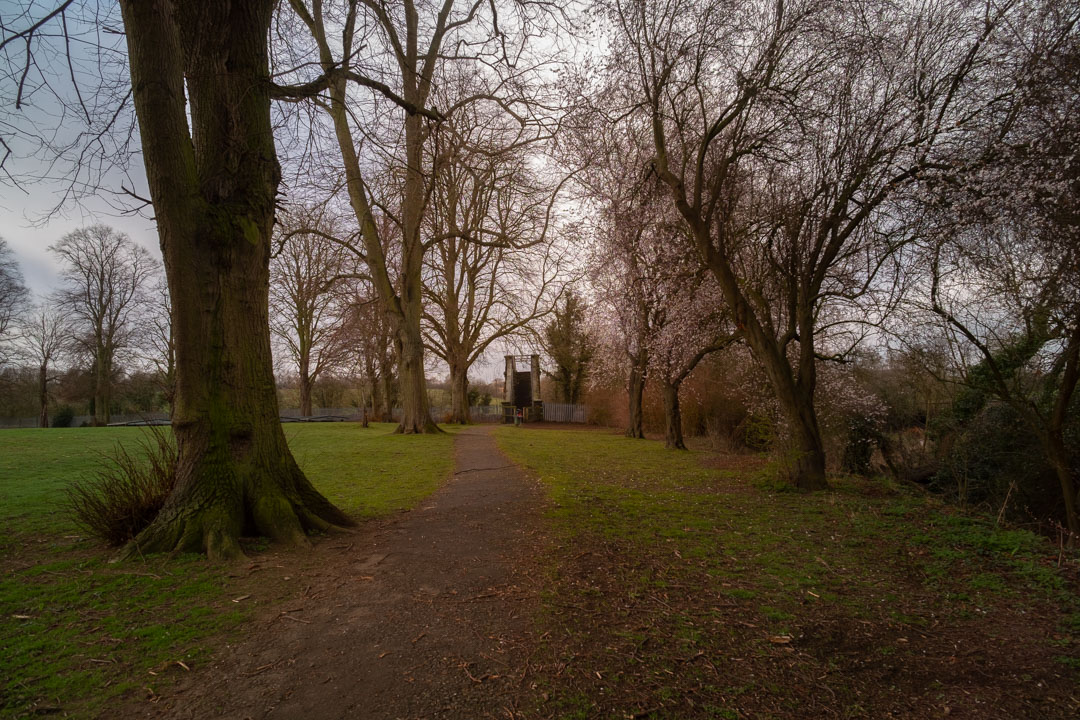 Photo of path and trees in a park taken on a full spectrum camera with a wide-angle lens with Tiffen Hot Mirror filter