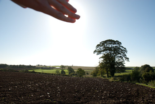 Photo with hand covering the sun to prevent lens flare