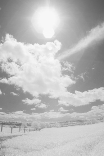 Photo taken with Tokina 10-17mm fisheye lens on Fuji IS Pro with rear mounted Lee Infrared polyester filter
