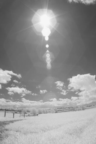 Photo taken with Tokina 10-17mm fisheye lens on Fuji IS Pro with front mounted (Cokin P) Hitech Infrared resin filter