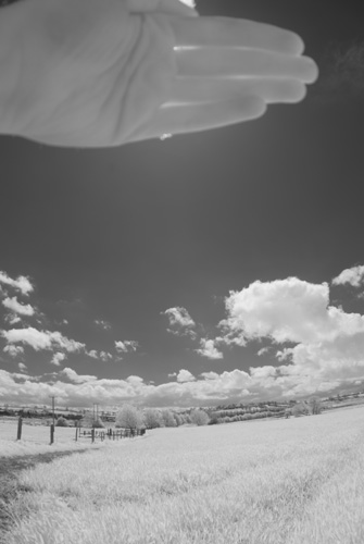 Photo taken with Tokina 10-17mm fisheye lens on Fuji IS Pro with front mounted (Cokin P) Hitech Infrared resin filter and hand held in front of the sun to reduce flare