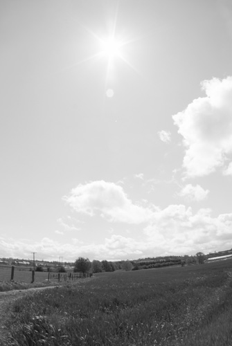 Photo taken with Tokina 10-17mm fisheye lens on Fuji IS Pro with B+W 486 UVIR cut filter held in front of the lens