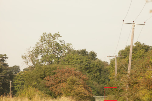 image taken at 300mm with Green.L dHD polarising filter