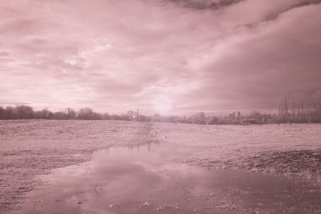 Photo taken with a full spectrum converted Fujifilm X-M1 camera and Lee 730nm infrared polyester filter held in front of the lens