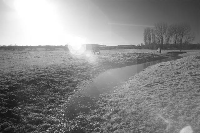 Photo showing lens flare when shooting into the sun with Zomei 850nm filter