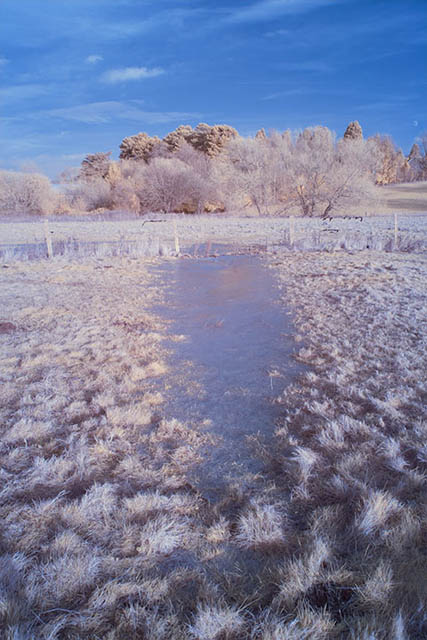 Photo of a frozen puddle in a field taken with a Hoya 25A Red filter