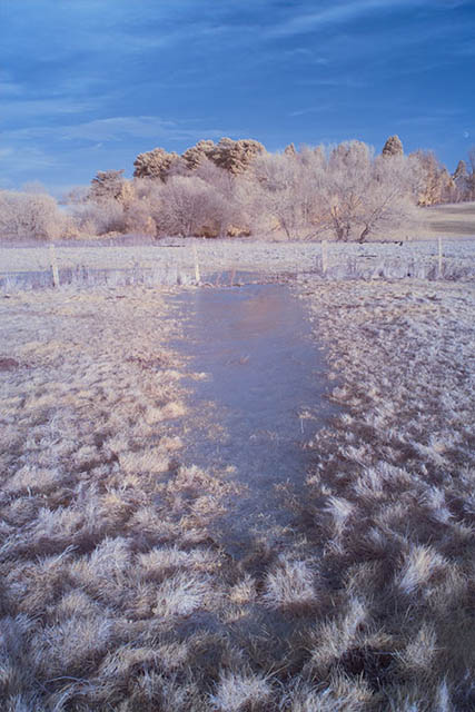 Photo of a frozen puddle in a field taken with a Lee Tri-colour Red 610nm polyester filter