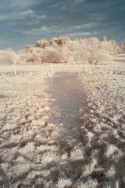 Photo of a frozen puddle in a field taken with a Zomei 680nm infrared filter