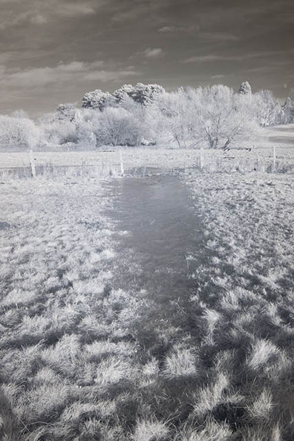Photo of a frozen puddle in a field taken with a Zomei 760nm infrared filter