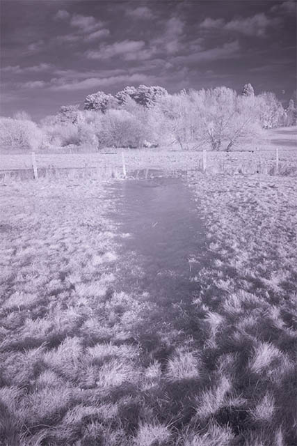 Photo of a frozen puddle in a field taken with a Zomei 850nm infrared filter