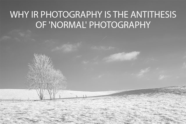 Why IR Photography is the antithesis of 'normal' photography