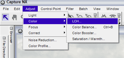 Adjust > Color menu flyout in Capture NX