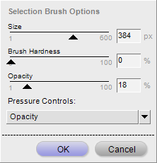 Selection brush options dialog in Capture NX